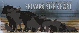 Felvarg Size Comparison Chart
