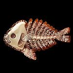 Pumpkinseed Skeleton by Ulfrheim