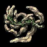 Kelp by Ulfrheim