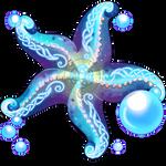 Starfish by Ulfrheim