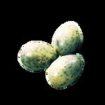 Rotten Seagull Eggs by Ulfrheim
