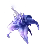 Iced Lily by Ulfrheim