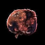 Rotten Apple by Ulfrheim