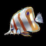 Butterfly Fish by Ulfrheim