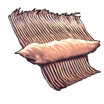 Baleen Piece by Ulfrheim