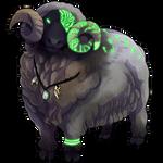 Black Sheep by Ulfrheim