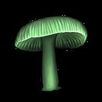 Luminescent Mushroom