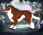 Tigress 5353