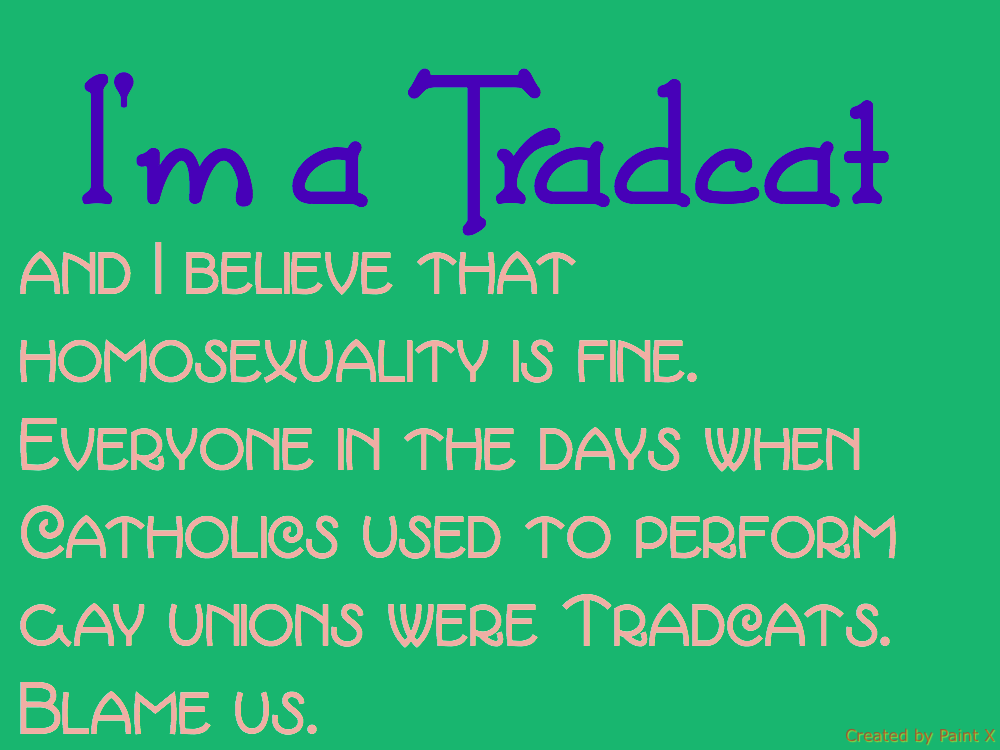 Tradcat for homosexuality by HDLMatchette