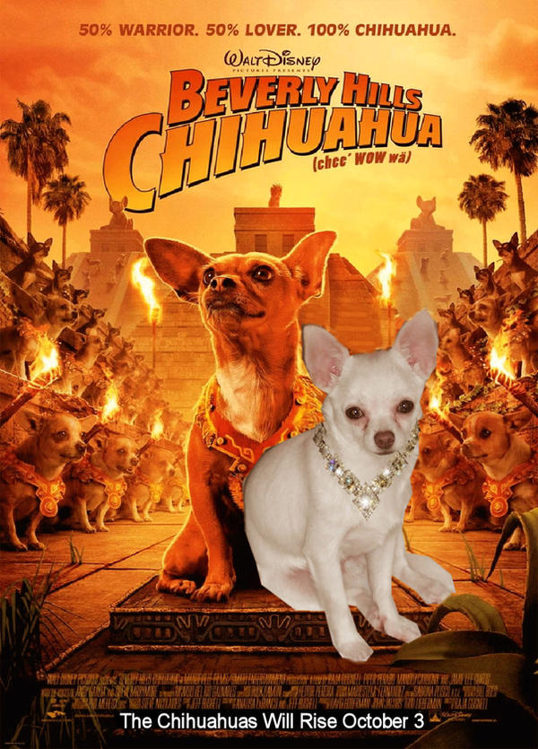 Beverly Hills Chihuahua by pikabellechu