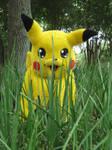 A Wild Pikachu Appears