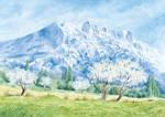 Sainte Victoire au printemps by Saomalou