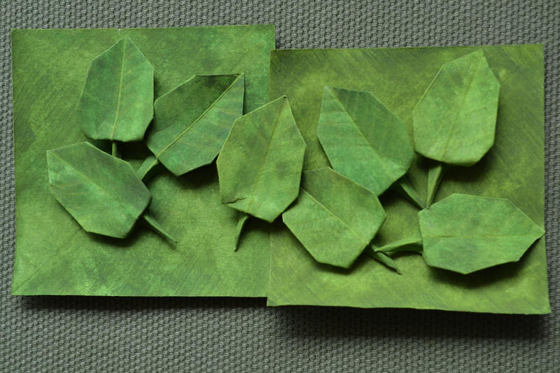 Olive Leaves by ReverseCascade