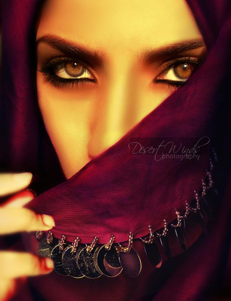 The Arabian Belly Dancer by Desert-Winds on DeviantArt