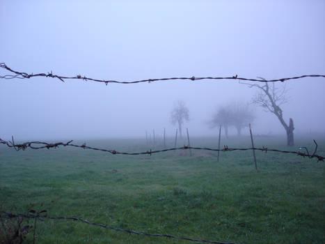 Fog on the Barrow Downs
