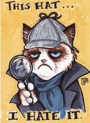 Grumpy Sherlock Cat by birdiebo