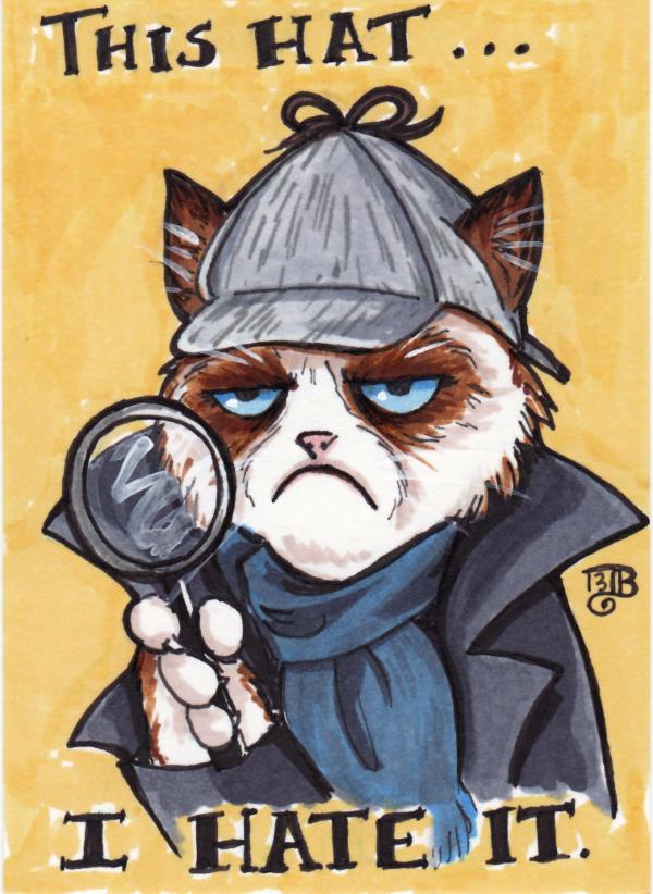 Grumpy Sherlock Cat