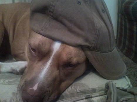 Kingston Sleeps with Hat 3