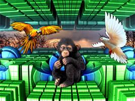 The Chimpanzee Fear of Birds