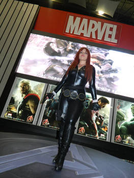 Avengers: Black Widow Files