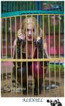 Harley Quinn madness