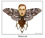 Amalgam by ShaneGallagher