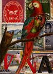 The Kimono Parrot
