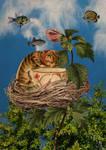 The suureal cat
