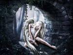 the hiding by ClaudiaSchirmetz