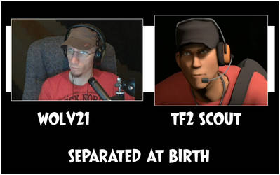 Wolv21 and TF2 Scout separated at birth