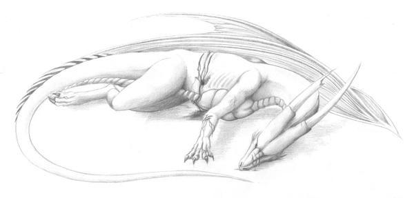 broken_dragon by Klaudyna