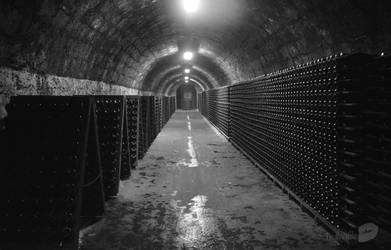 Torley cellar by trollwaffle