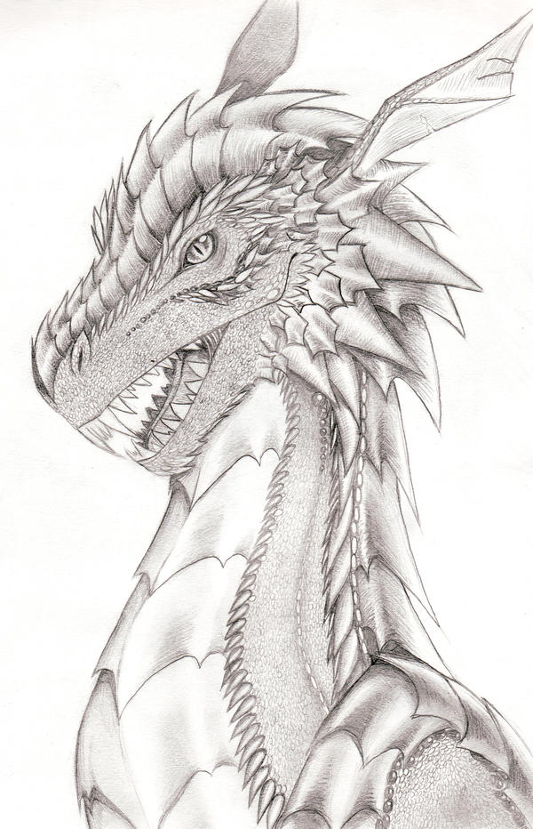 Dragon head by Xoriu on DeviantArt