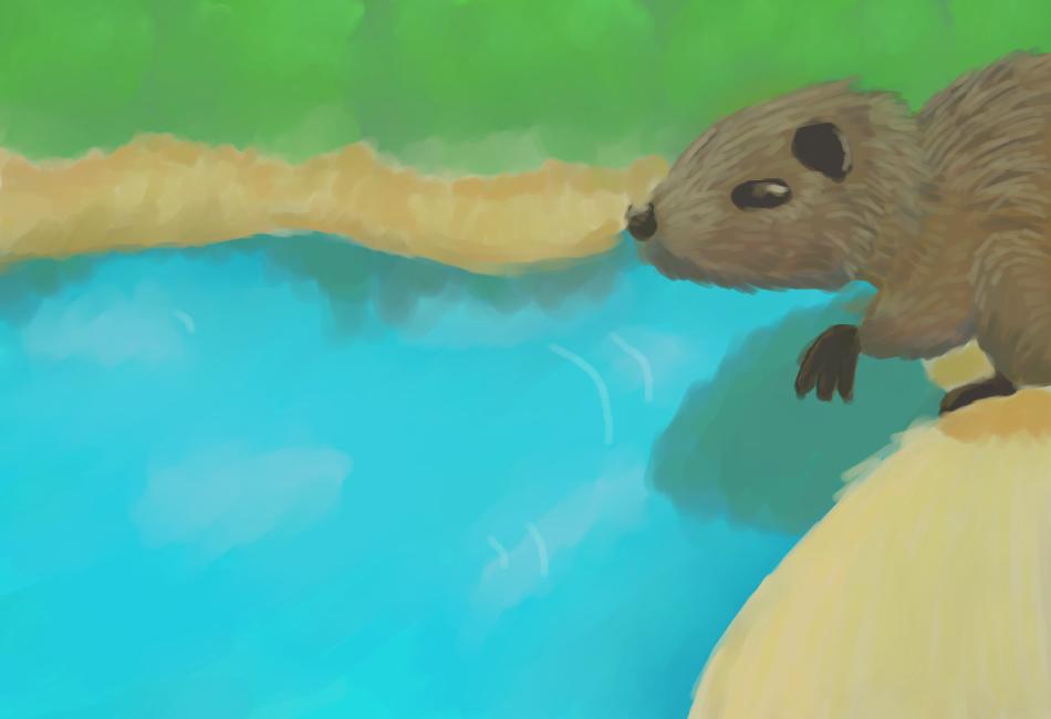 Beaver by Rukisho