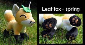 Leaf fox - spring