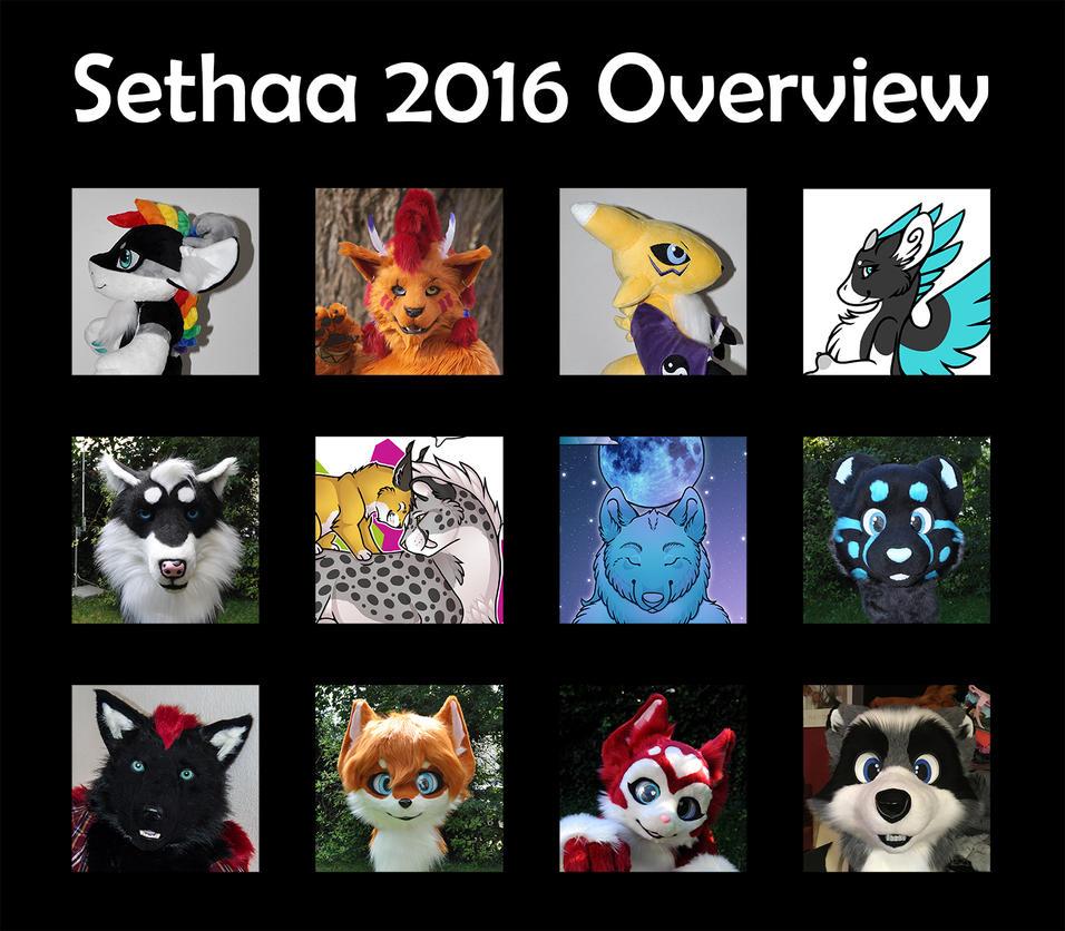 Summary 2016 by Sethaa