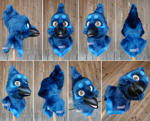 Toony Raven Head by Sethaa