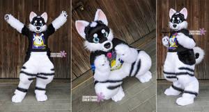 Lumi Husky 3/4 Suit