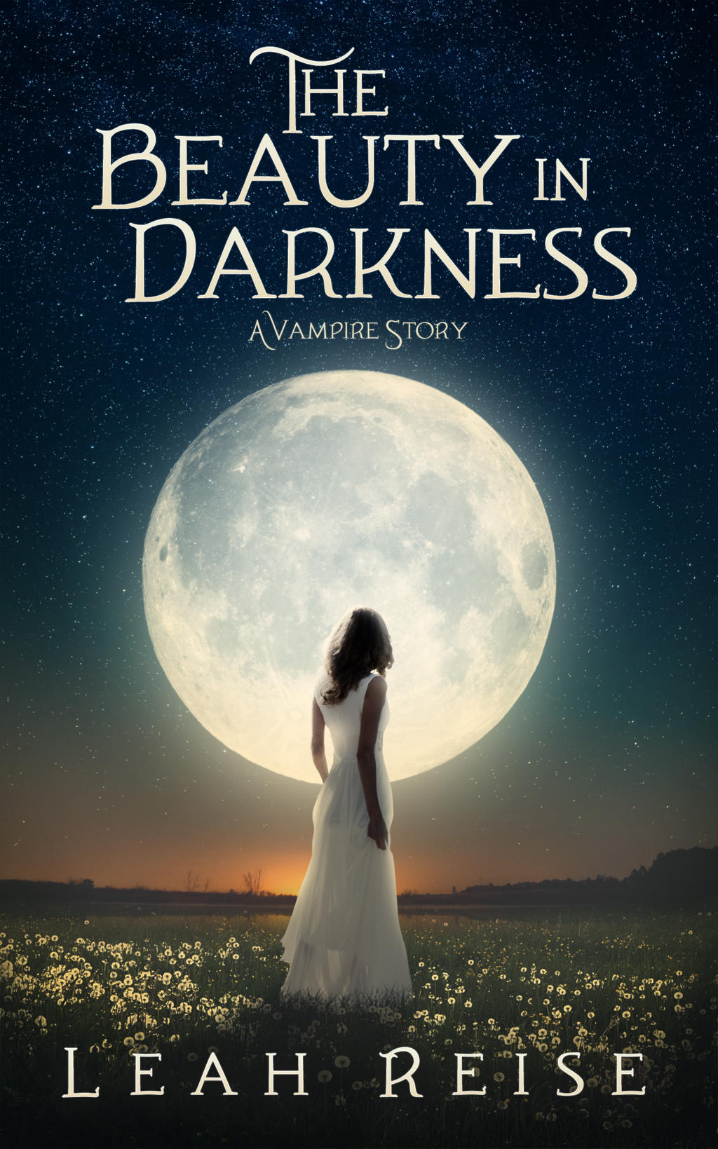 Book Cover Design for The Beauty in Darkness by ebooklaunch