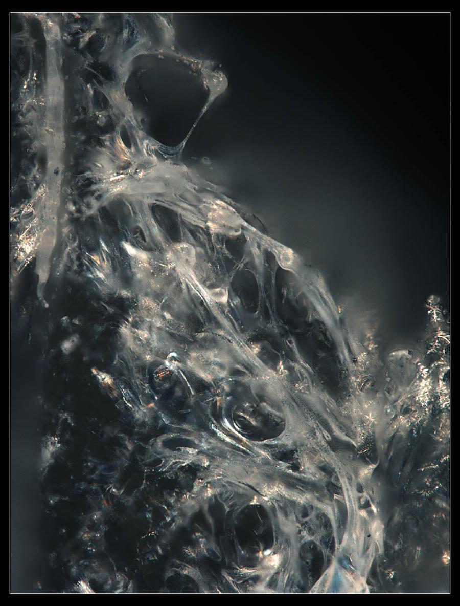 Urus micrographie 16 by Urus-28