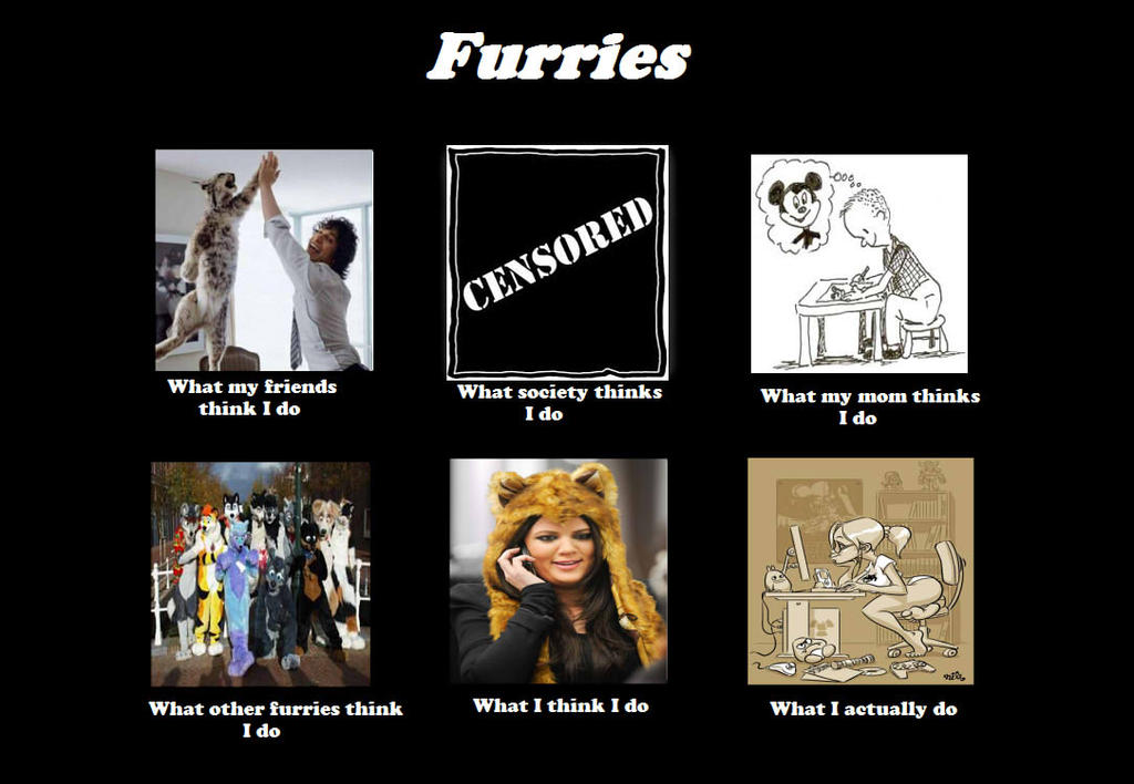 What i think i do meme furries by d jett