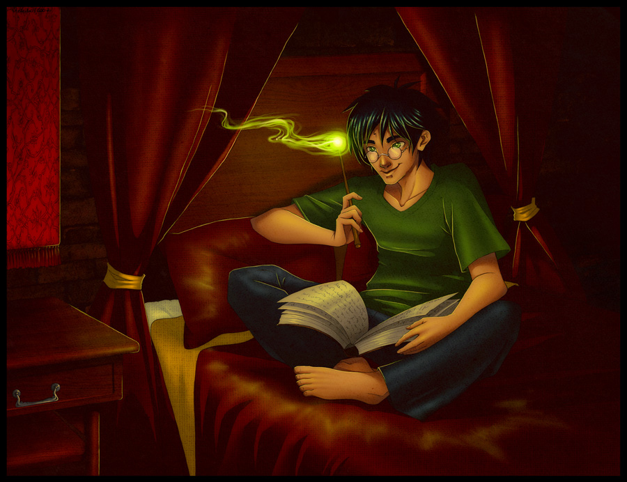 Harry Potter Commission by verauko