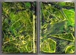 Sketchbook - Green Yellow 4x6