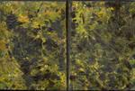 Sketchbook - Dark Yellowish 1