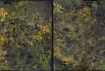Sketchbook - Dark Yellowish 2