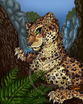 Mysterious Leopardess