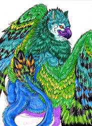 Handsome Gryphon colored