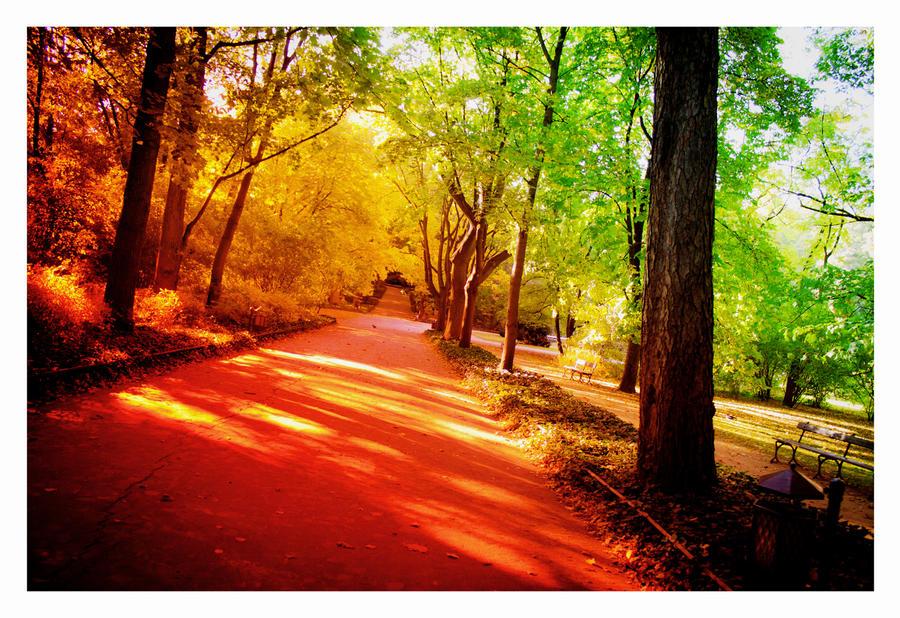 summer autumn
