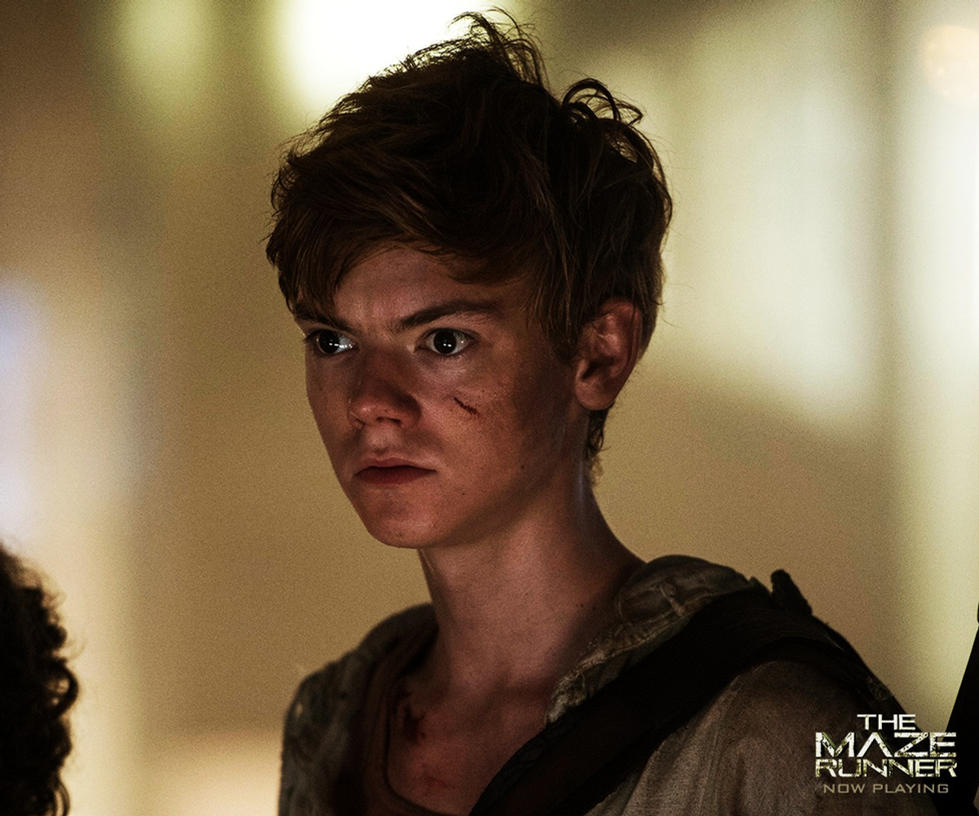 and newt like most people is my favourite character surprise surprise who doesnt love thomas brodie sangsters adorable baby face - Baby Chat Room