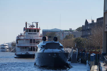 Savannah River by LaughingBudda